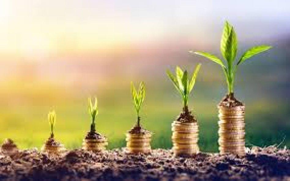 бизнес-инвестиции и партнерство